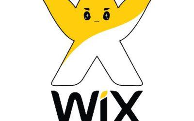 Стажировка в компании WiX